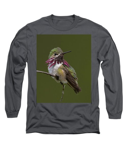 Calliope Hummingbird Long Sleeve T-Shirt