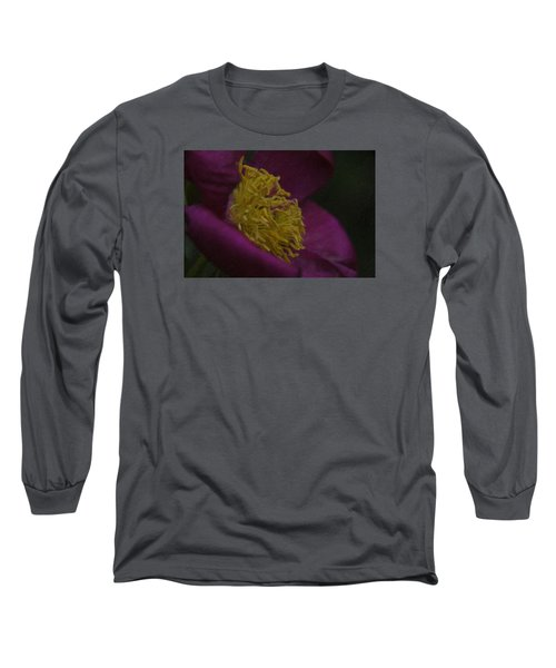 Purple Flower Long Sleeve T-Shirt by Andre Faubert