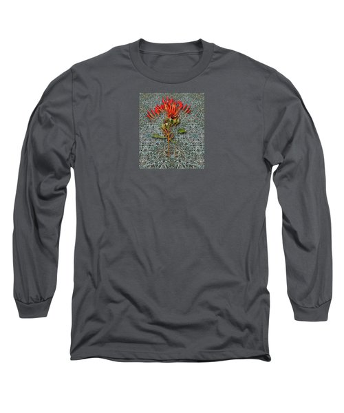 Long Sleeve T-Shirt featuring the photograph 4400 by Peter Holme III