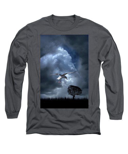 Long Sleeve T-Shirt featuring the photograph 4472 by Peter Holme III