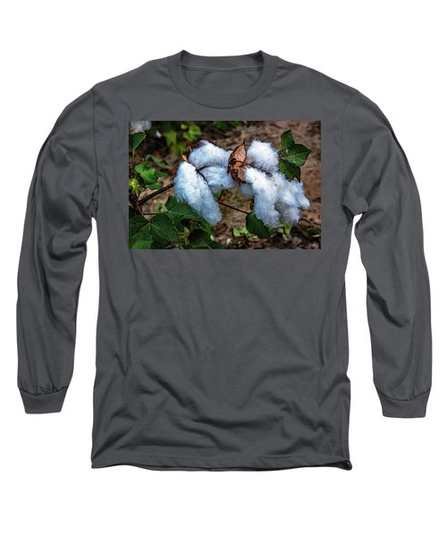 8 Bolls Of Cotton  Long Sleeve T-Shirt