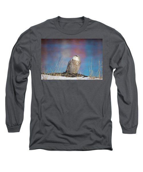 A Colorful Snowy Owl Long Sleeve T-Shirt