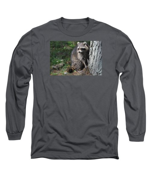 A Curious Raccoon Long Sleeve T-Shirt