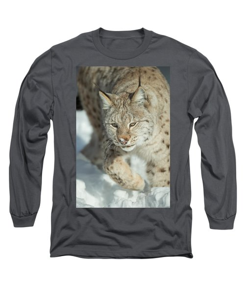 A Eurasian Lynx In Snow Long Sleeve T-Shirt