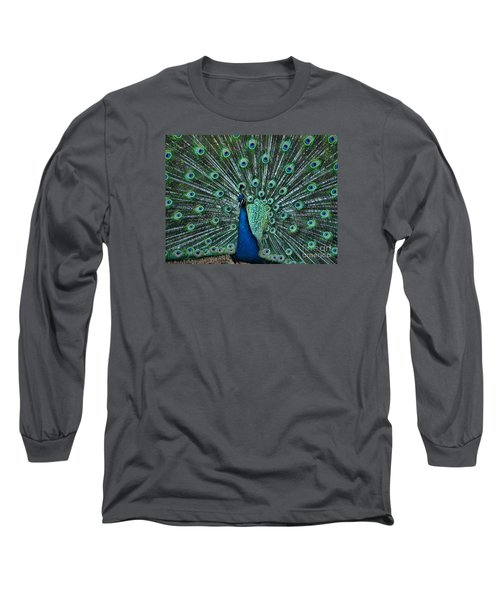 A Glory To The Eyes Long Sleeve T-Shirt