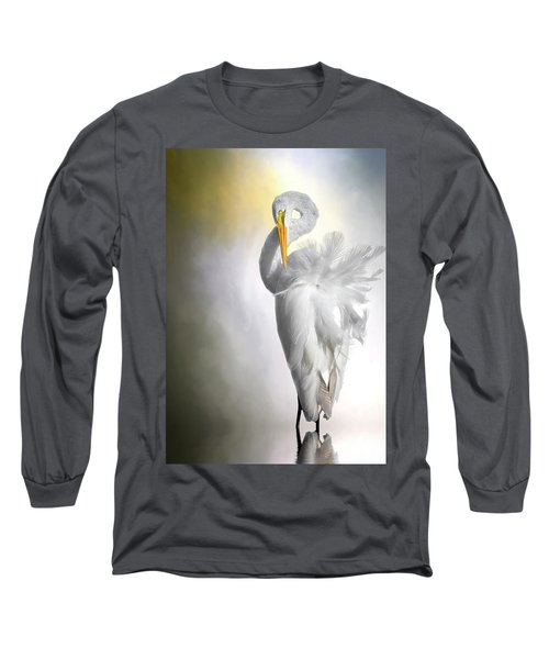 A Lady Needs Her Privacy Long Sleeve T-Shirt