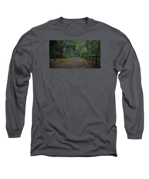 A Lincoln Park Autumn Long Sleeve T-Shirt by Ken Stanback