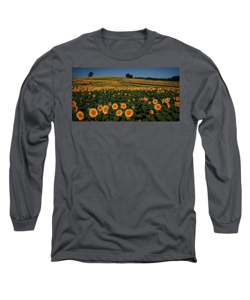 Long Sleeve T-Shirt featuring the photograph A Lot Of Birdseed  by Chris Berry