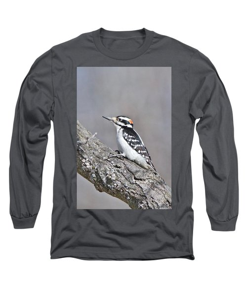Long Sleeve T-Shirt featuring the photograph A Male Downey Woodpecker 1120 by Michael Peychich