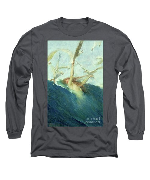 A Mermaid Being Mobbed By Seagulls Long Sleeve T-Shirt