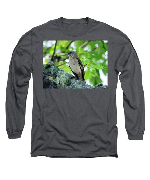 A Mockingbird Song Long Sleeve T-Shirt