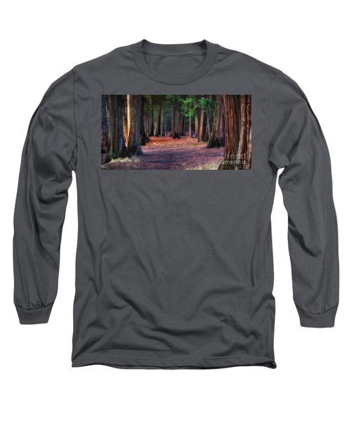 A Path Of Redwoods Long Sleeve T-Shirt