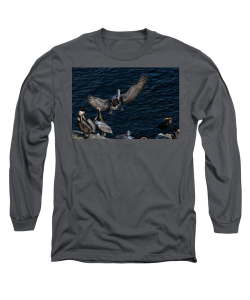 A Place To Land Long Sleeve T-Shirt by James David Phenicie