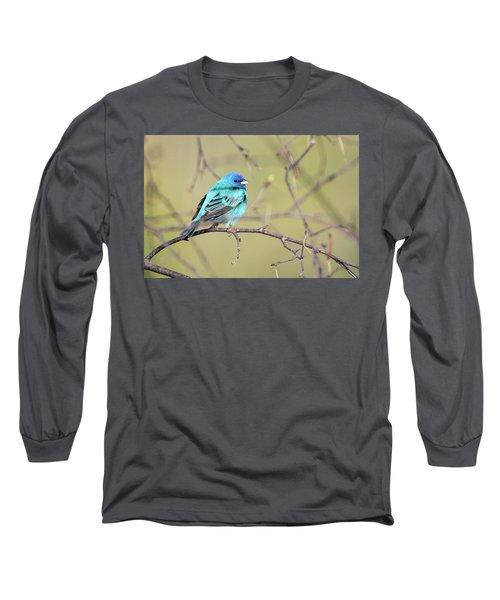 A Shiny Blue Gem Long Sleeve T-Shirt