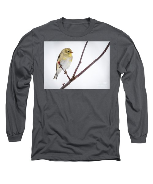 A Sign Of Spring Long Sleeve T-Shirt by Ricky L Jones