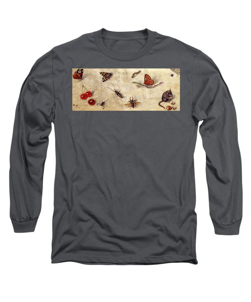A Study Of Various Insects, Fruit And Animals Long Sleeve T-Shirt