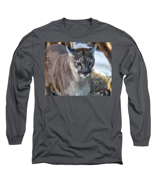 A Stunning Mountain Lion Long Sleeve T-Shirt