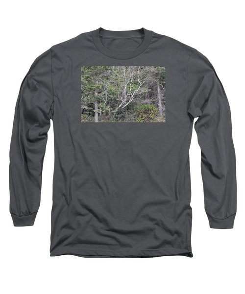 A Tanglewood Long Sleeve T-Shirt by Tobeimean Peter