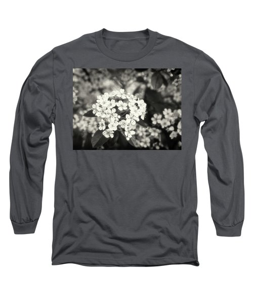 A Thousand Blossoms In Sepia 3x4 Flipped Long Sleeve T-Shirt