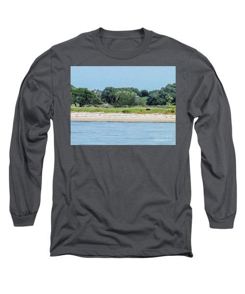 A Wild Horse Grazing Long Sleeve T-Shirt
