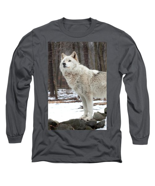 A Wolfs Modeling Pose Long Sleeve T-Shirt by Gary Slawsky