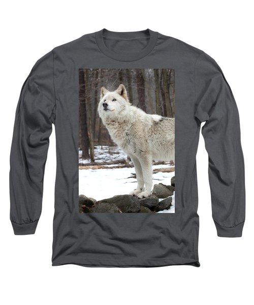 A Wolfs Modeling Pose Long Sleeve T-Shirt