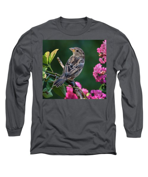 Long Sleeve T-Shirt featuring the photograph Adorable House Finch by Jim Moore