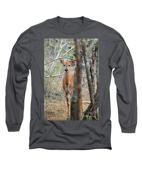 Africa Safari Bushbuck 2 Long Sleeve T-Shirt
