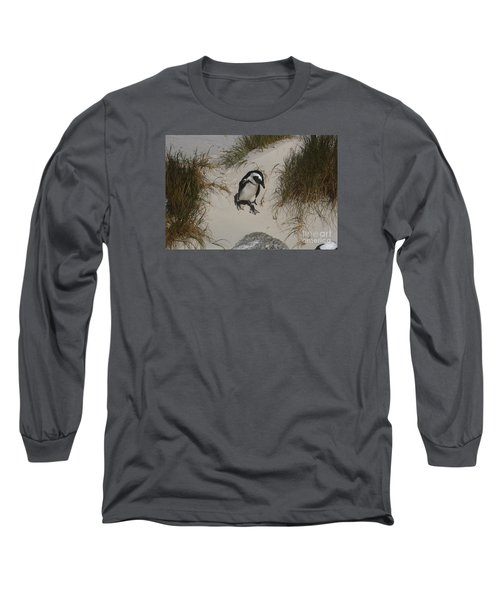 African Penguin On A Mission Long Sleeve T-Shirt by Bev Conover