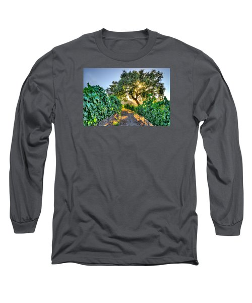 Afternoon In The Vineyard Long Sleeve T-Shirt by Derek Dean