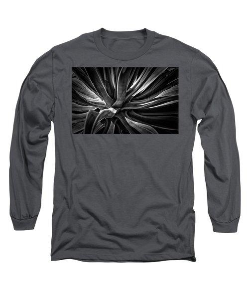 Agave Burst Long Sleeve T-Shirt by Lynn Palmer