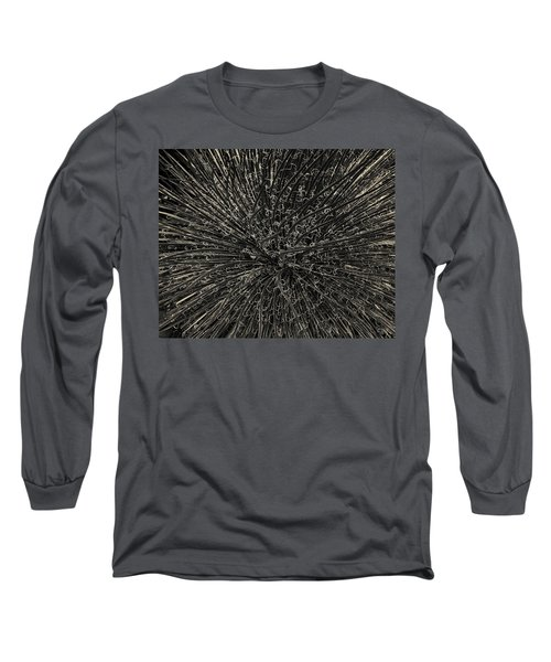 Long Sleeve T-Shirt featuring the photograph Agave I Toned by David Gordon
