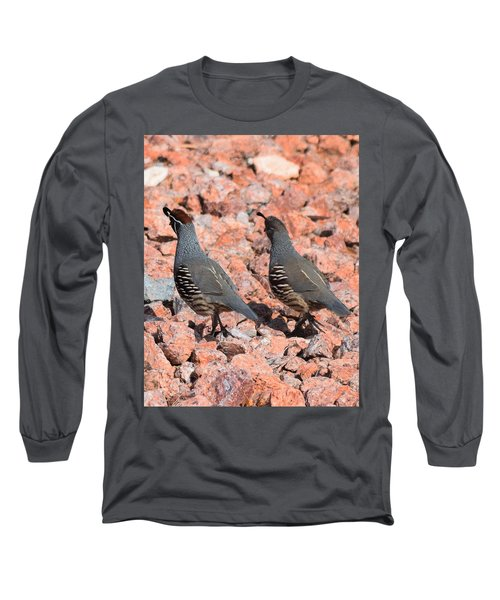 Ahhhh My Little Desert Quail Long Sleeve T-Shirt by John Glass
