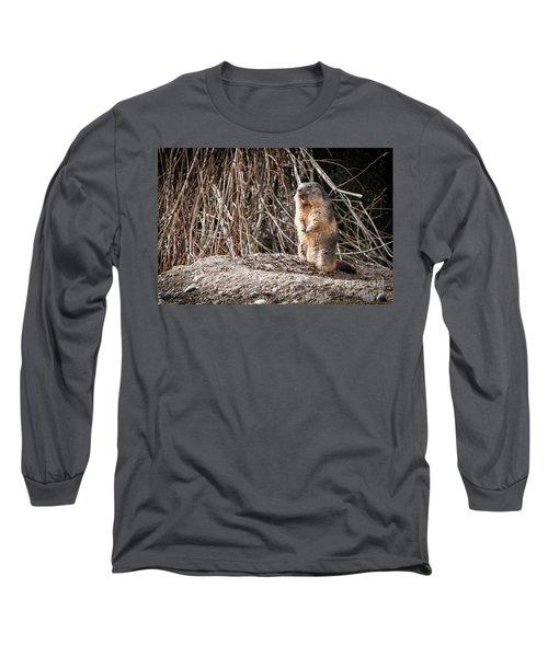 Alan,alan, Alan, Alan Long Sleeve T-Shirt