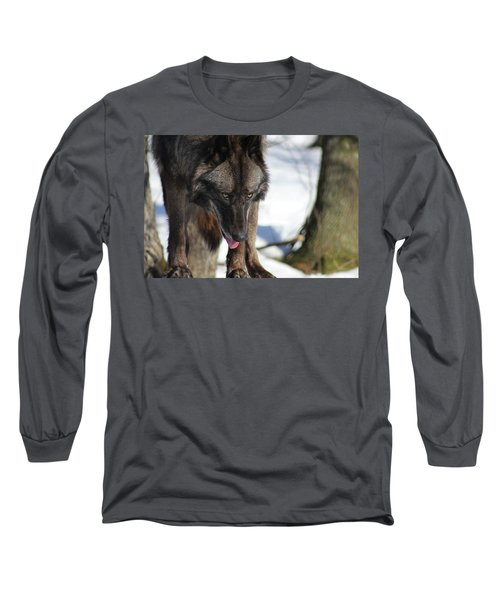 Alaskan Tundra Wolf Long Sleeve T-Shirt