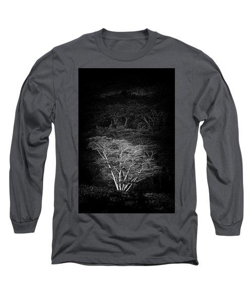 Albezia Tree Long Sleeve T-Shirt