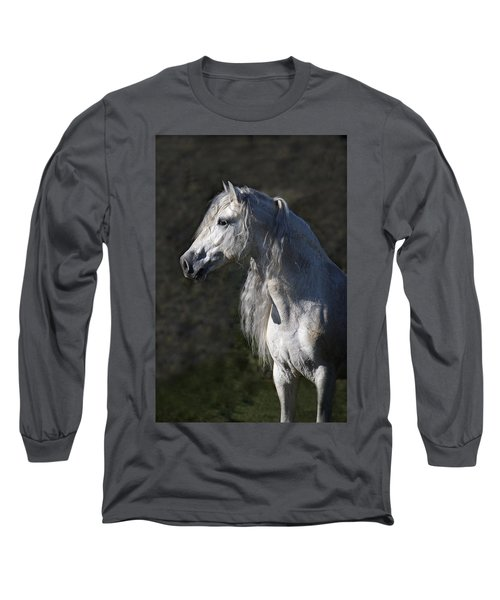 Alejandro Long Sleeve T-Shirt by Wes and Dotty Weber