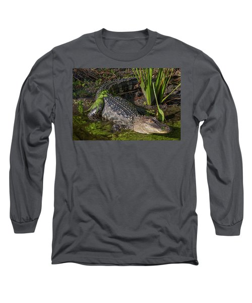 Algae Gator Long Sleeve T-Shirt