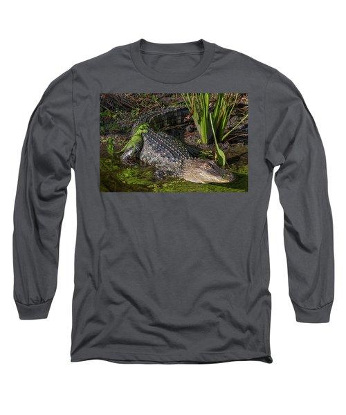 Algae Gator Long Sleeve T-Shirt