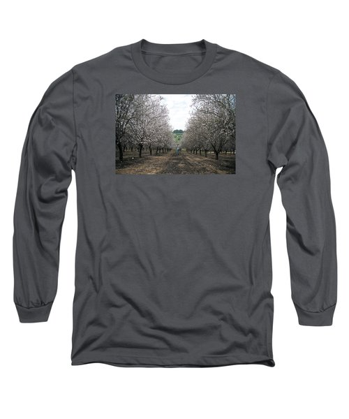 Long Sleeve T-Shirt featuring the photograph Almonds Of Lachish by Dubi Roman
