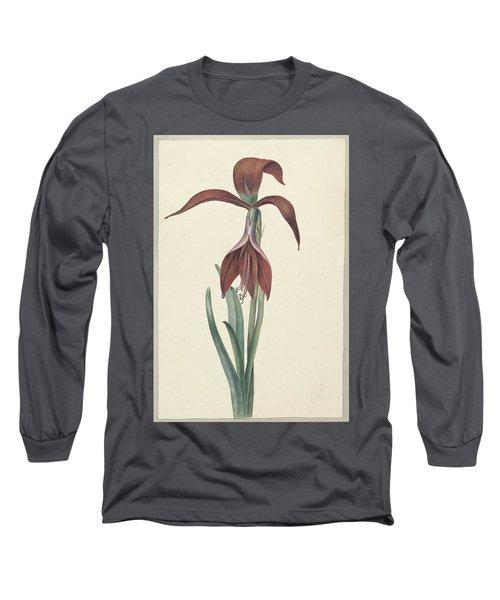 Amaryllis Formosissima Long Sleeve T-Shirt