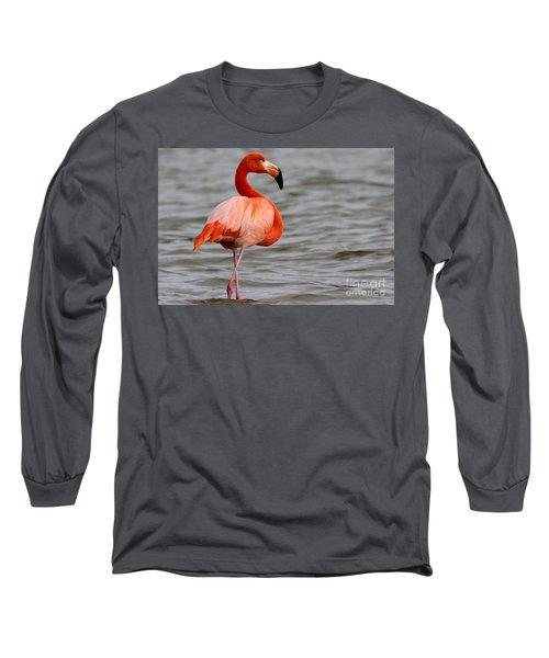 American Flamingo Long Sleeve T-Shirt by Meg Rousher