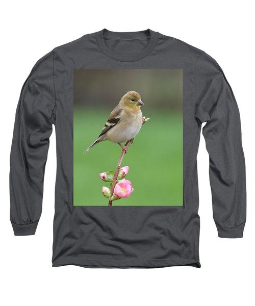 American Goldfinch Long Sleeve T-Shirt by Doug Herr