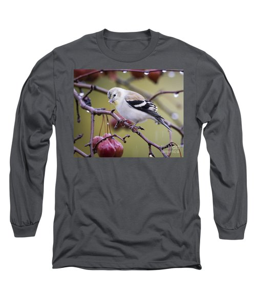 American Goldfinch In The Rain Long Sleeve T-Shirt