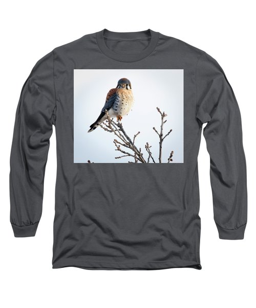 American Kestrel At Bender Long Sleeve T-Shirt