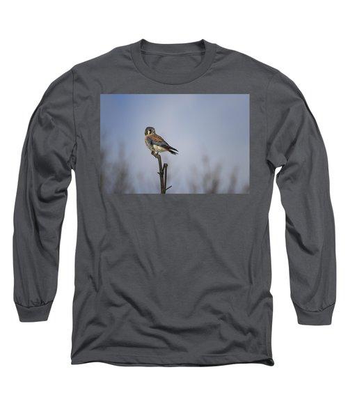 American Kestrel Long Sleeve T-Shirt by Gary Hall