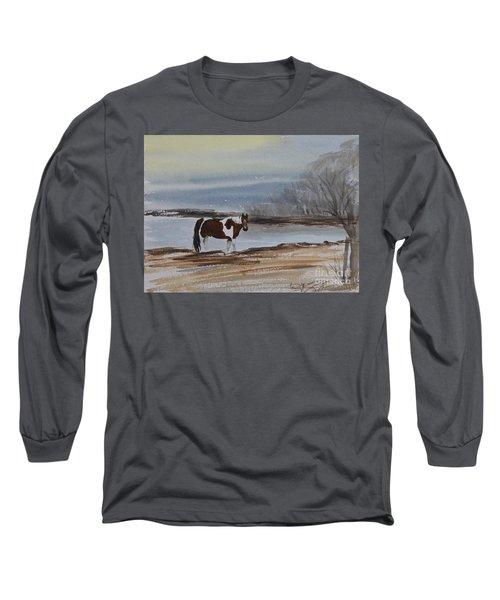 American Paint Long Sleeve T-Shirt