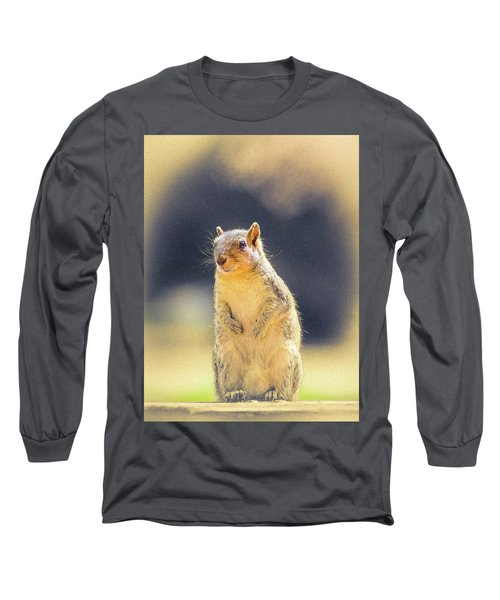 American Red Squirrel Long Sleeve T-Shirt