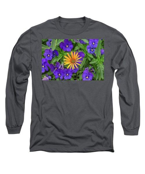 An Aureole Of Sublime Beauty Long Sleeve T-Shirt
