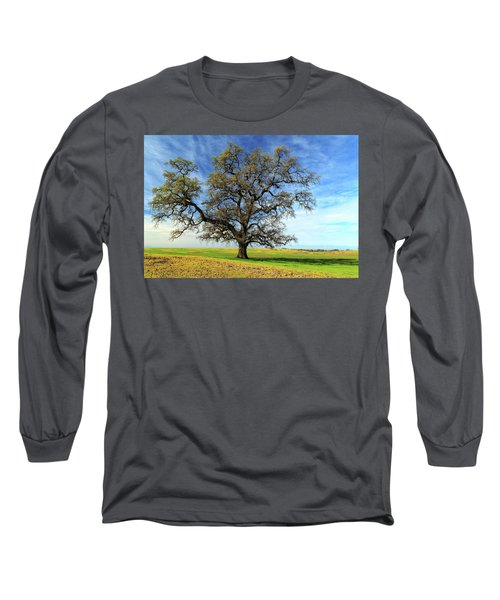 Long Sleeve T-Shirt featuring the photograph An Oak In Spring by James Eddy